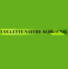COLLETE NATURE BLOG (CNB)