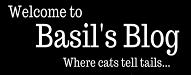 bionicbasil.blogspot