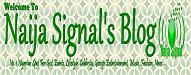 naija signal blog