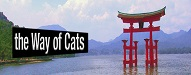 wayofcats