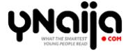 Best Nigerian Bloggers 2019 ynaija.com